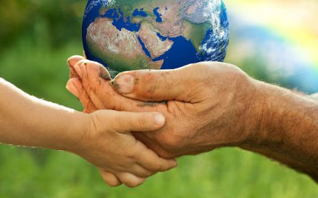 Growing Environmental Law In The Eyes Of Sustainable Development